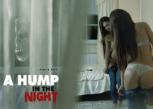 A Hump in the Night